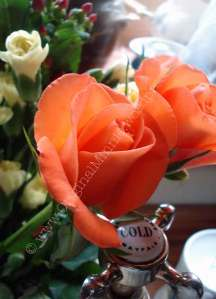 Coral/orange Rose