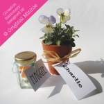 Original Minnie © Wedding and Occasion Stationery 2011 - Name Place Labels from my Sweets for my Sweets range