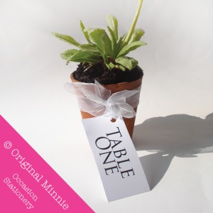 Original Minnie © Handmade Wedding and Occasion Stationery Favour plant pot table number/name label with organza ribbon
